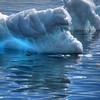 Iceberg, Cuverville Island