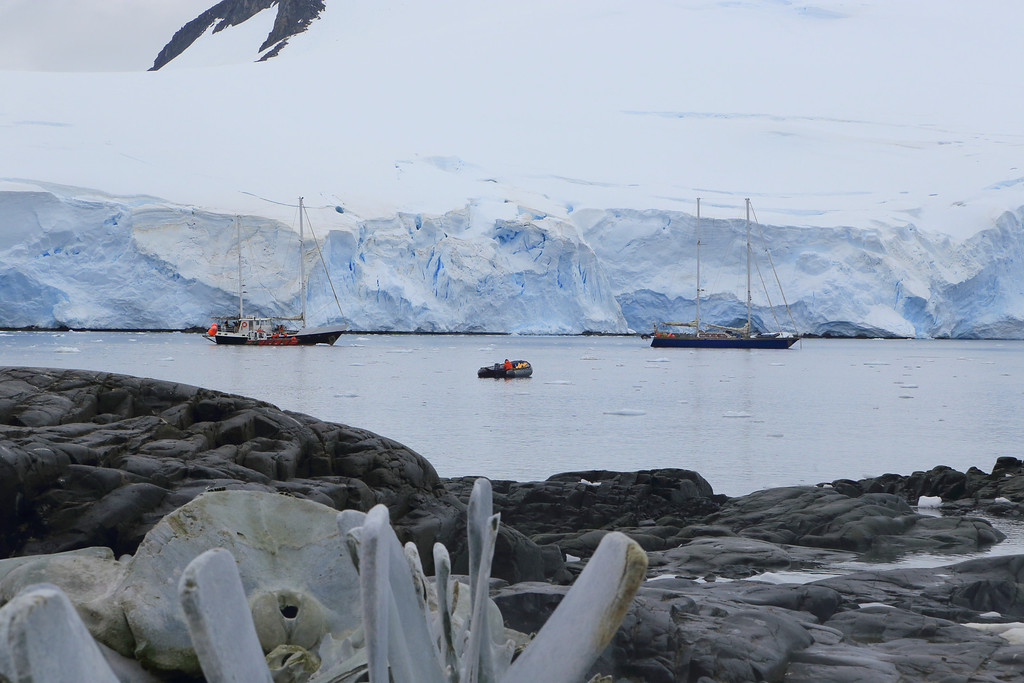 two sailboats at Port Lockroy. The Drake Passage must be a fun ride!