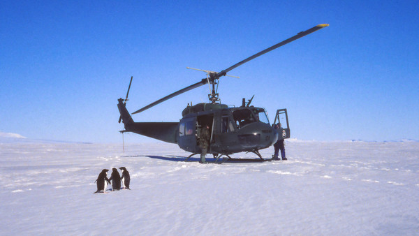 RNZAF 3 Squadron Helicopter on the sea ice in McMurdo Sound, and 3 curious adelie penguins that came running over to check it out.