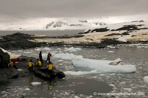 Landing the Zodiac at Detaille Island - Antarctica