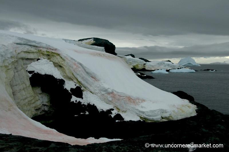 Colorful Ice - Antarctica