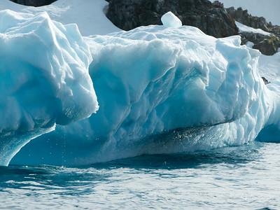 Coastal Ice