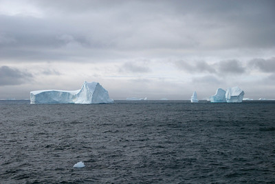 Everywhere we look there are icebergs of all shapes and sizes.