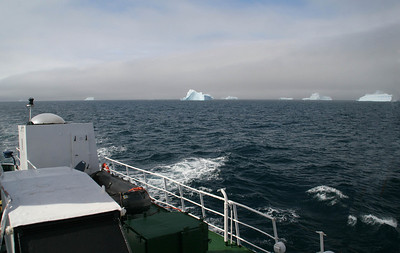 View of the icebergs from the stern of the ship.