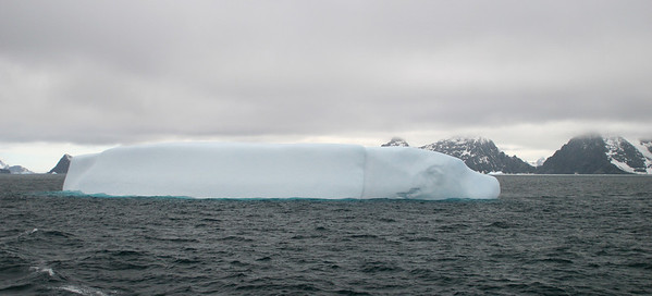 This iceberg reminds me of a dog lying down.