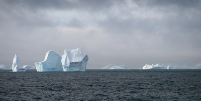 Icebergs in the South Orkneys.