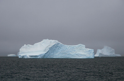 Icebergs around Coronation Island in the South Orkneys.