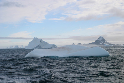Icebergs in the South Orkneys.  The one in the forefront is stained with guano, but there is no sign of penguins.