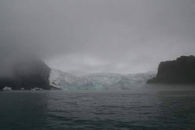 We did a zodiac cruise near the face of this glacier at Point Wild, but by the time we got close, the fog was thick as pea soup, so we did not see much.  (I took this picture before the fog thickened.)