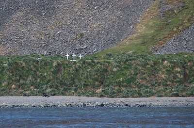 There are lots of graves in Grytviken; mostly of whalers.  These are but three of them.