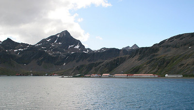 Approach to Grytviken.  The red-roofed buildings belong to the British Antarctic Survey research station at King Edward Point, about 1 kilometer across King Edward Cove from Grytviken.