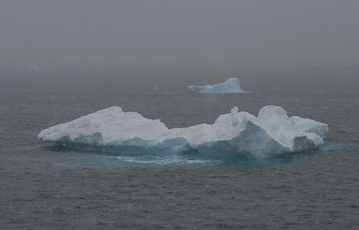 We're cruising through Dallman Bay; the weather continues to be overcast and foggy, and it is still snowing.
