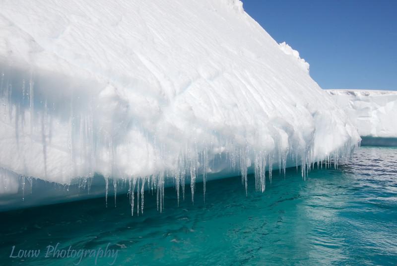 Iceberg, Melchior Islands, Antarctica