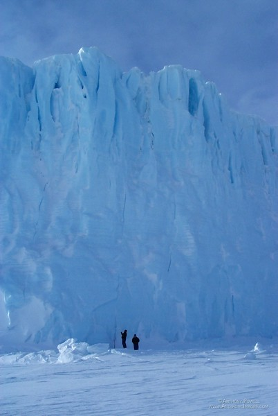 Standing near the base of the Barne Glacier.