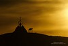 """Our Lady of the Snows"" shrine is a memorial to a bulldozer operator who lost his life when his machine broke through the sea ice and plunged to the bottom of the ocean."
