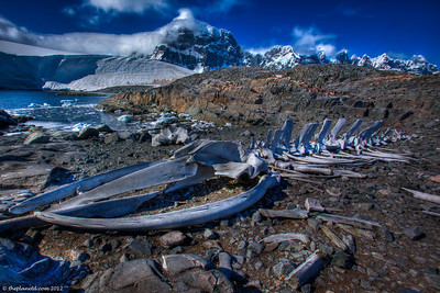 Antarctica-landscape-photos-5