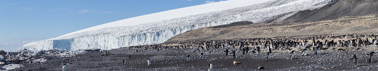"Cape Bird penguin colony and the Bird Glacier on the northern tip of Ross Island.<br /> A zoomable version of this picture can be viewed at full resolution here... <a href=""http://www.gigapan.com/gigapans/173107"">http://www.gigapan.com/gigapans/173107</a>"