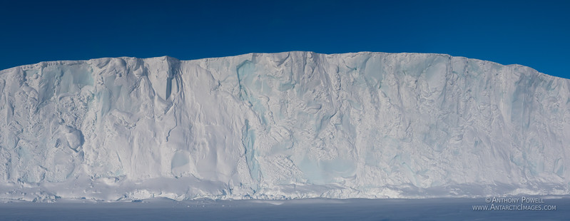 Barne Glacier face in late winter. Much of the normally visible vibrant blue ice has been covered by blowing snow.