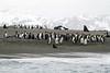 CRay-Antarctica-3871