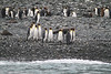 CRay-Antarctica-3530