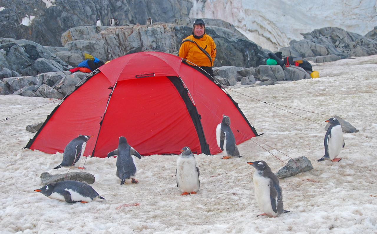 Petermann Island Camp