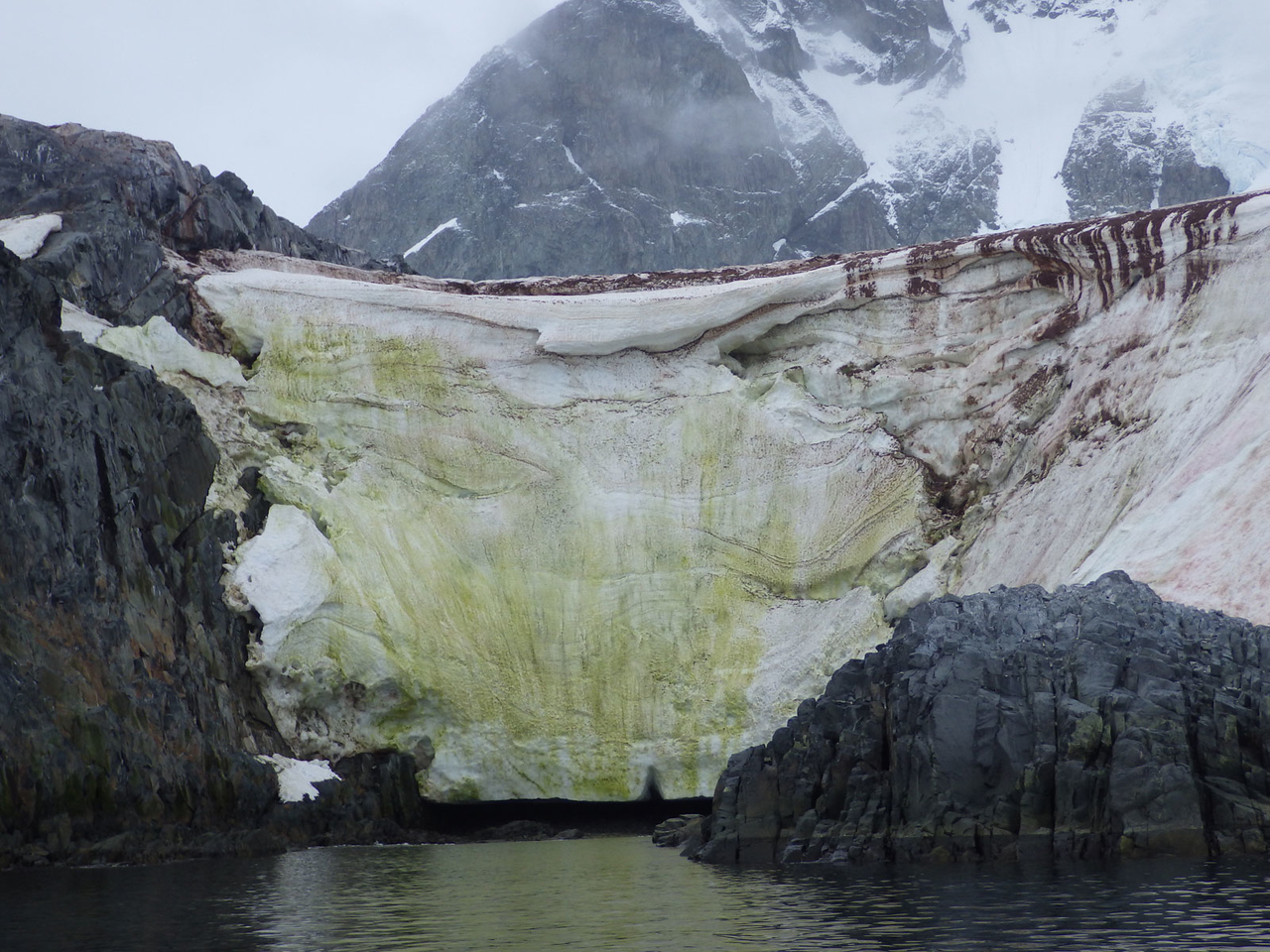 Penguin Poop and Green Ice