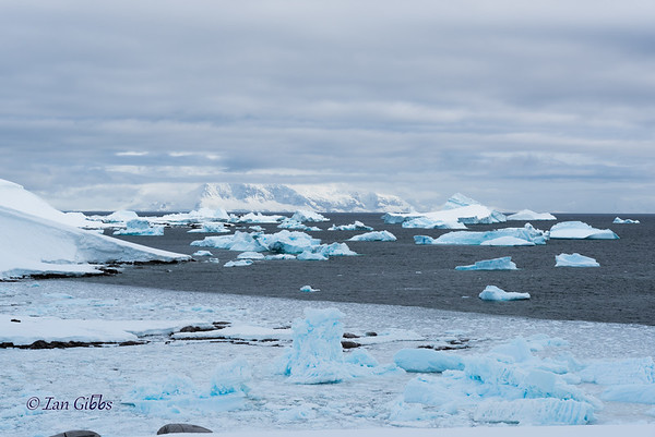 Blue Icebergs and White Mountains #1