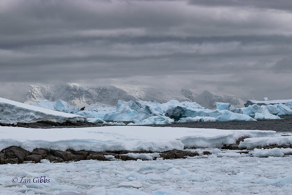 Blue Icebergs and White Mountains #5