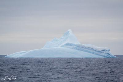 Expeditiion Day 9 - Onward to the Amundsen Sea 17 Jan 2015