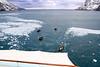 CRay-Antarctica-7326