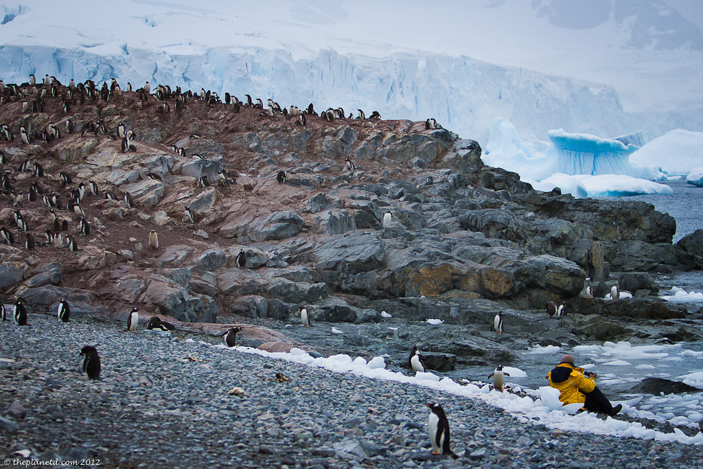 Land Excursion, Antarctica