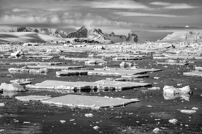 Sea Ice and Mountains B&W