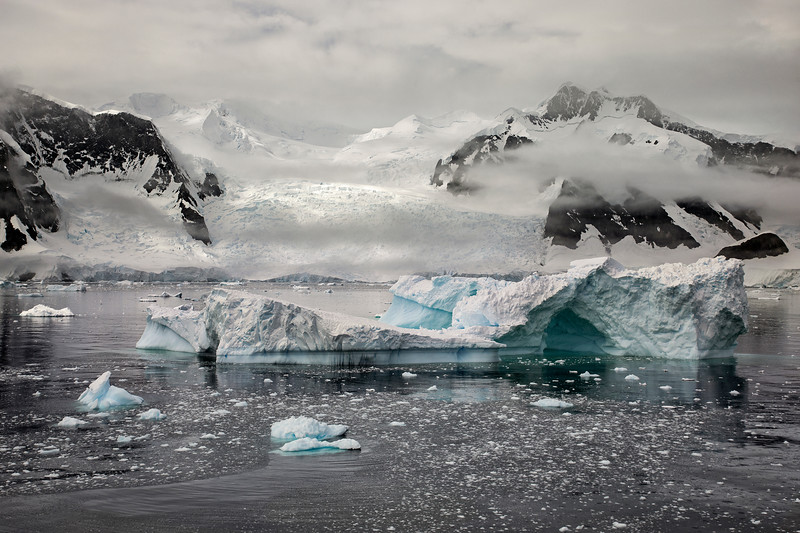 Iceberg and Glacier, Antarctica