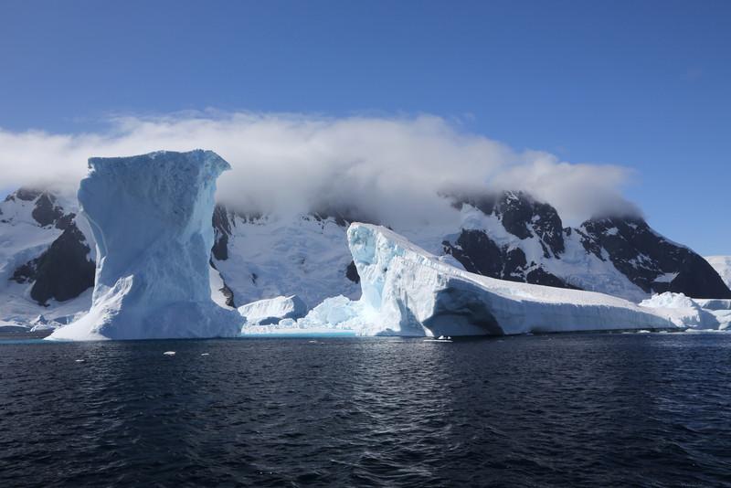 Icebergs off Pleneau Island