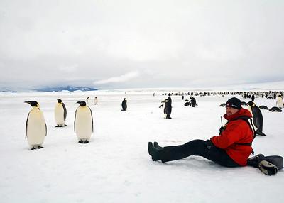 antarctica-weddel-sea-penguins-3