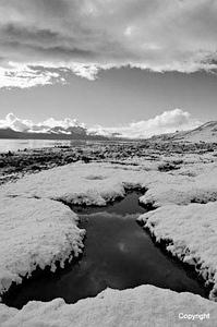 SouthGeorgia_Grytviken_SnowinSummer_BW1436