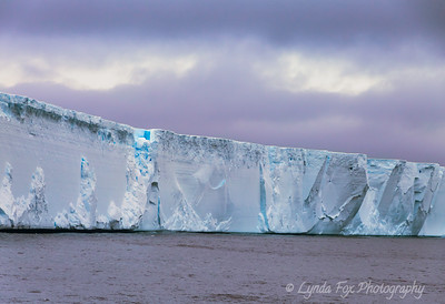 Massive Iceberg Shelf