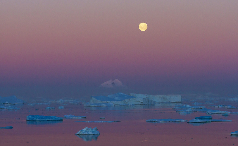 Moonrise over the Chrystal Channel - February 3, 2015<br /> I will never see a moonrise as wonderful as the one I experienced that night.  Our captain glided slowly through the waters of the Chrystal Channel, so as not to cause too many ripples in the water, in order for us to capture the amazing mirror reflections that evening.  It was as if we were on another planet.  Very quiet, pastel evening skies, and the moon rising over fields of floating icebergs.