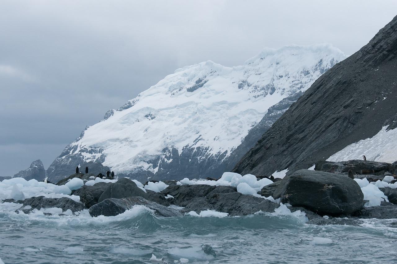 Elephant Island in the Antarctica Peninsula