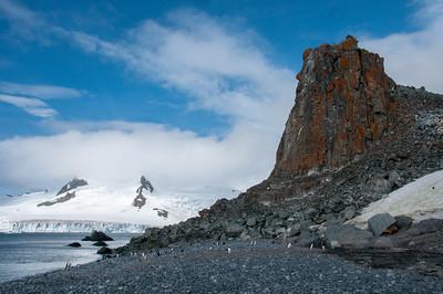 Lichten covered in rock in Half Moon Island, Antarctica