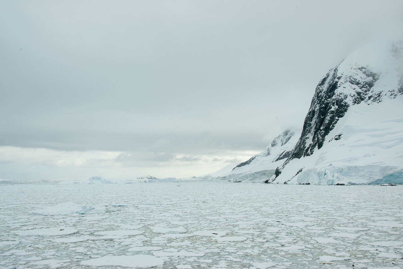 Icebergs in Lemaire Channel, Antarctica