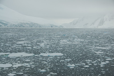 Sheets of ice all over Lemaire Channel, Antarctica