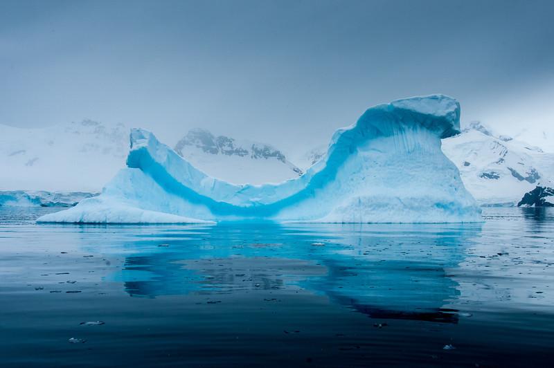 Iceberg in Paradise Bay