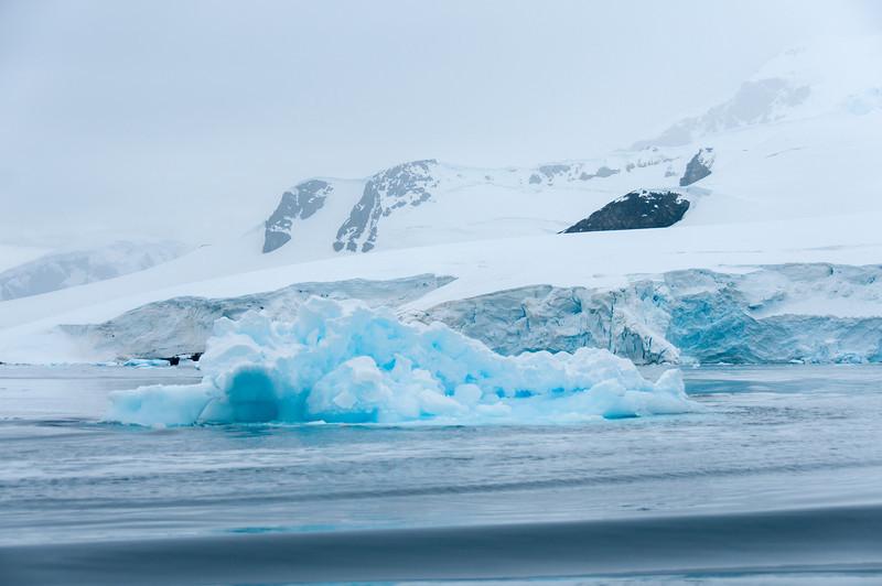 Glacier in Paradise Bay