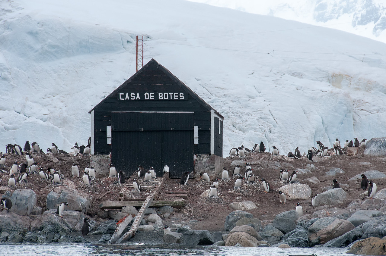 Boat house at Chilean station, Paradise Bay