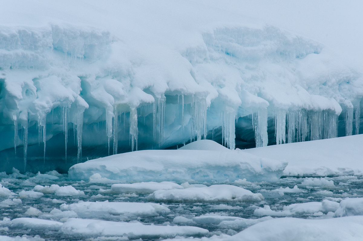 Icicles in Pleaneu Bay, Antarctica