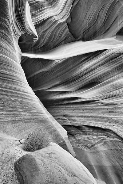 Antelope Canyon 9112bw
