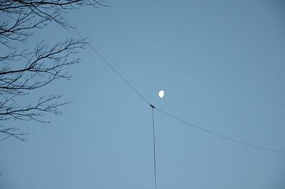 Receive Antenna Distribution