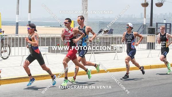 fotoaccionpe-proximacarrera-maxsouffriaucom-necatpace-lima-itu-triathlon-world-cup-2019-20191103-1901.jpg