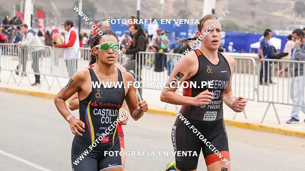 fotoaccionpe-proximacarrera-maxsouffriaucom-necatpace-lima-itu-triathlon-world-cup-2019-20191103-0844.jpg